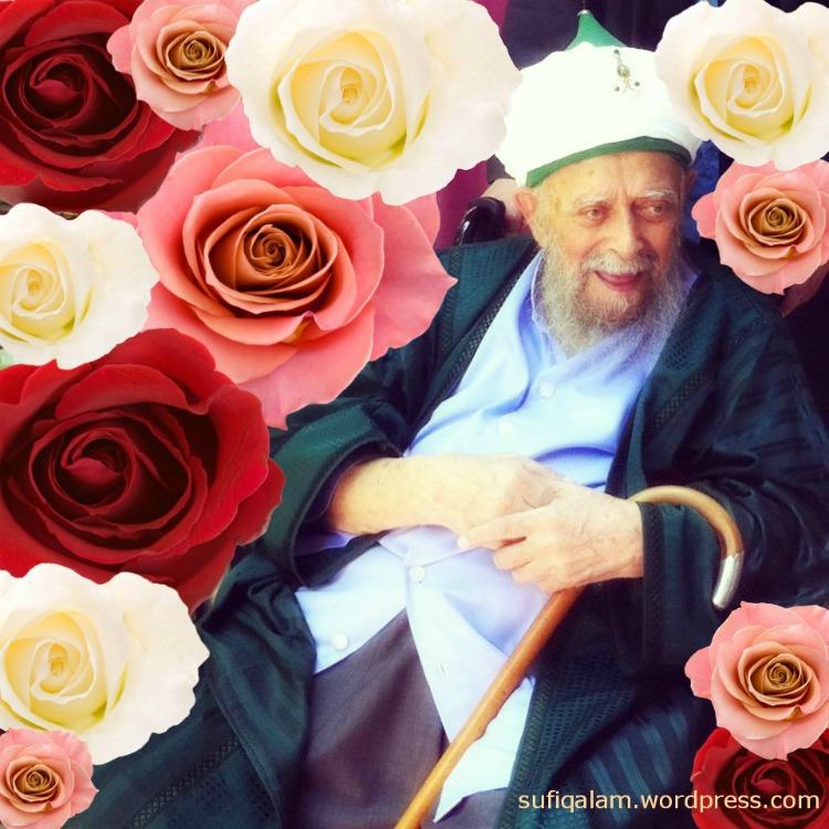 Sultan-Roses