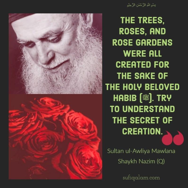 Sultan ul Awliya Mawlana Sheikh Nazim, Quotes, roses, Muharram, Sohbat