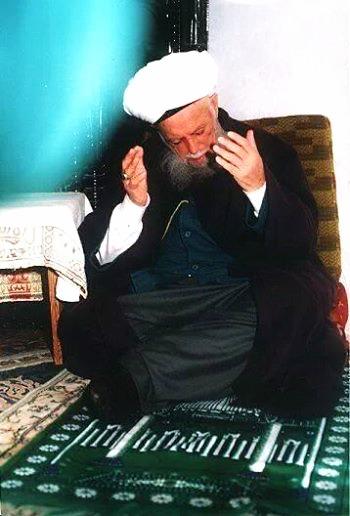 Mawlana-Shaykh-Nazim