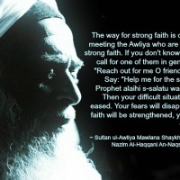Mawlana Shaykh Quotes