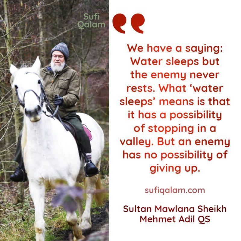 Sufi-Qalam-Quotes-Mawlana-Sheikh-Mehmet