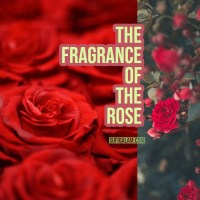 The Fragrance Of The Rose