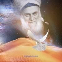 Bonding with the Heart of the Shaykh (Rabita i-Sharifa)